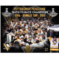 Pittsburgh Penguins Large 2017 Stanley Cup Plack