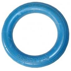 Ringette Ring